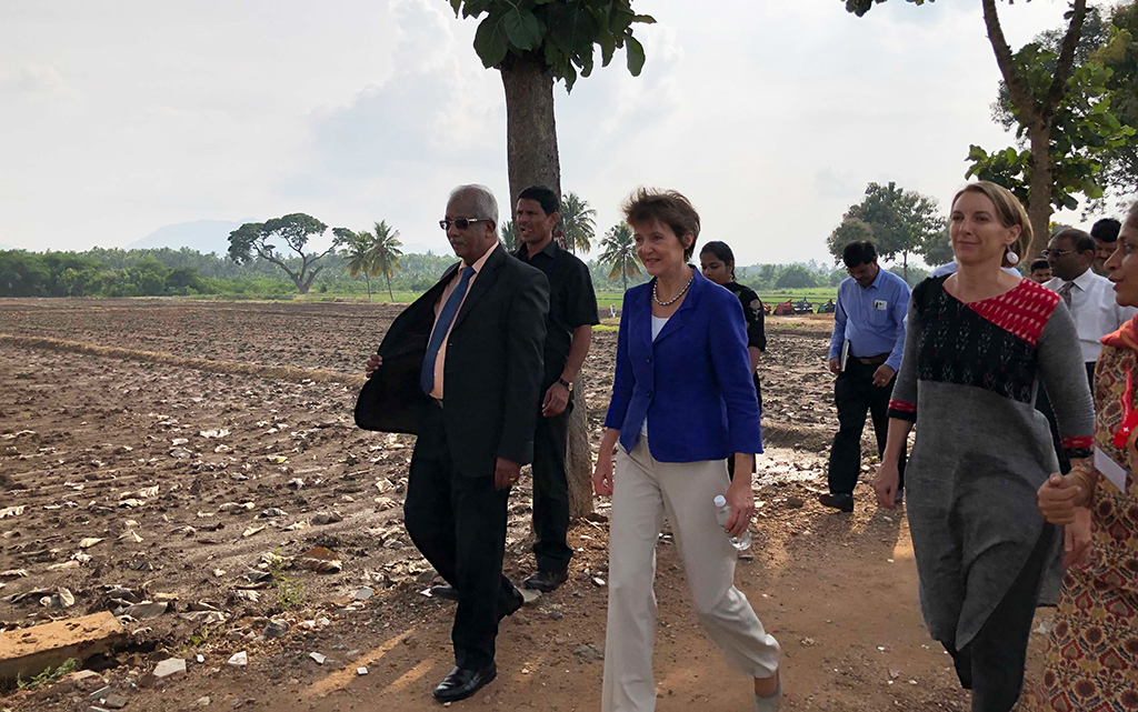 Visit to the rice farm at the University of Tamil Nadu (RIICE project)